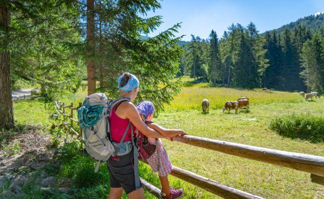 Wander Und Kletterausrüstung : Wanderurlaub in truden ferienwohnungen appartements gabrielli